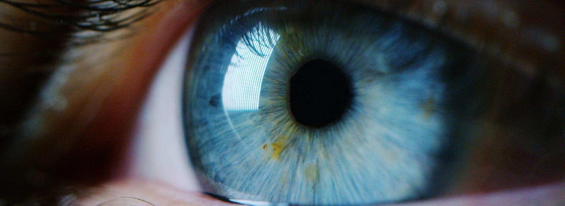 Tęczówka oka - zbliżenie